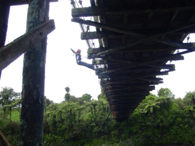 Bridge swinging